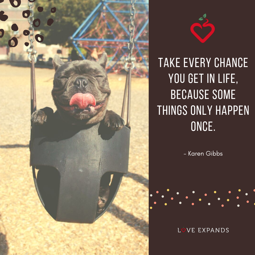 "Picture quote with a black Boston Terrier sticking out its tongue on a swing. Quote says, ""Take every chance you get in life, because some things only happen once."""