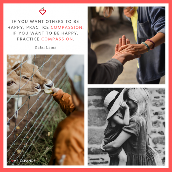 Picture quote by the Dalai Lama. If you want others to be happy, practice compassion. If you want to be happy, practice compassion. -