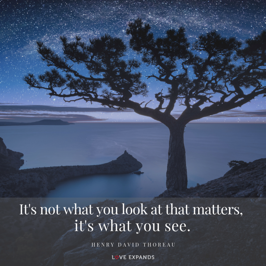 It's not what you look at that matters, it's what you see. Picture quote by Henry David Thoreau.
