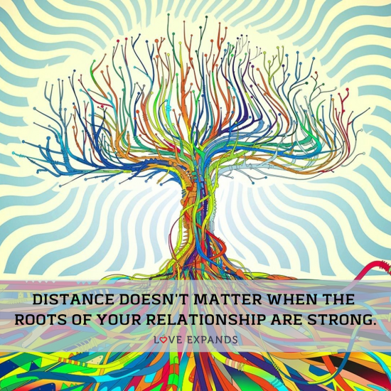 Picture quote: Distance doesn't matter when the roots of your relationship are strong.
