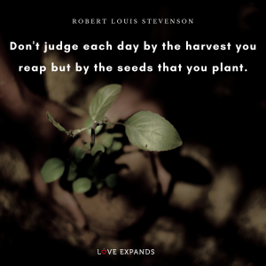 Picture quote by Robert Louis Stevenson of two hands picking up the harvest from seeds that were planted.