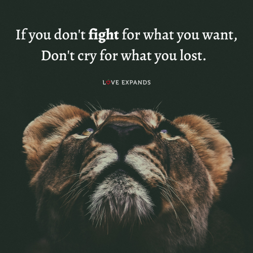 If you don't fight for…