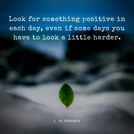 Positive picture quote of a plant growing among rocks