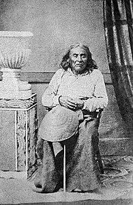 Best quotes by Chief Seattle