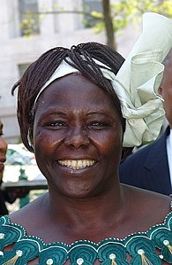 Best quotes by Wangari Maathai
