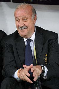 Best quotes by Vicente del Bosque