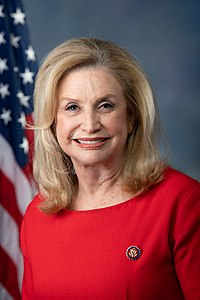 Best quotes by Carolyn Maloney