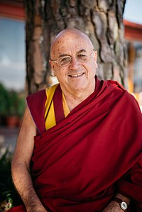 Best quotes by Matthieu Ricard
