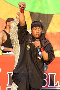 Best quotes by Professor Griff
