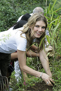Best quotes by Angela Lindvall