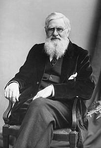 Best quotes by Alfred Russel Wallace