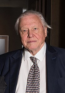 Best quotes by David Attenborough