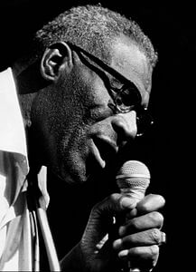 Best quotes by Howlin' Wolf