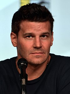 Best quotes by David Boreanaz
