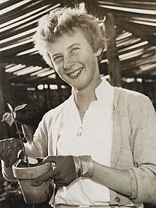 Best quotes by Betty Cuthbert