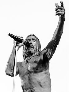 Best quotes by Iggy Pop
