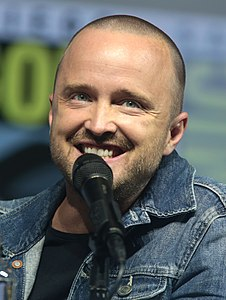 Best quotes by Aaron Paul