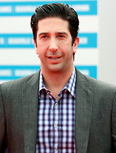 Best quotes by David Schwimmer
