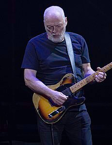 Best quotes by David Gilmour