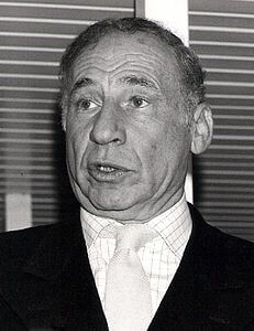 Best quotes by Mel Brooks