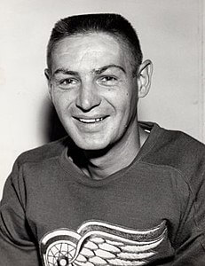 Best quotes by Terry Sawchuk