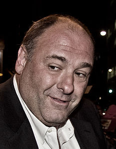 Best quotes by James Gandolfini