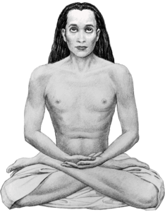 Best quotes by Mahavatar Babaji