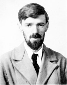 Best quotes by D. H. Lawrence