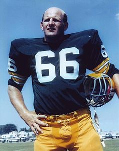 Best quotes by Ray Nitschke