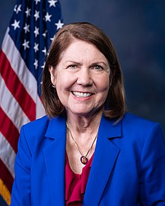 Best quotes by Ann Kirkpatrick