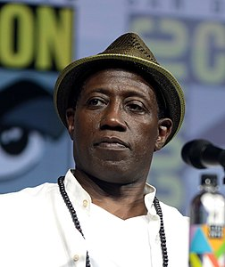 Best quotes by Wesley Snipes