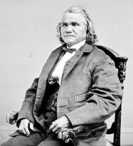 Best quotes by Stand Watie