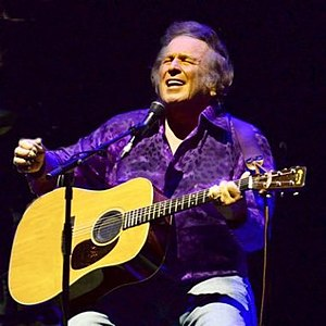Best quotes by Don McLean