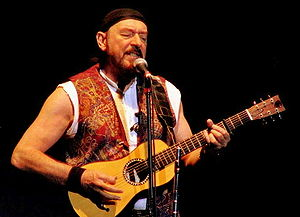 Best quotes by Ian Anderson