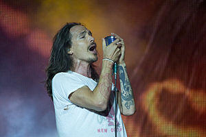 Best quotes by Brandon Boyd