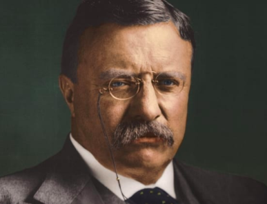 Best quotes by Theodore Roosevelt