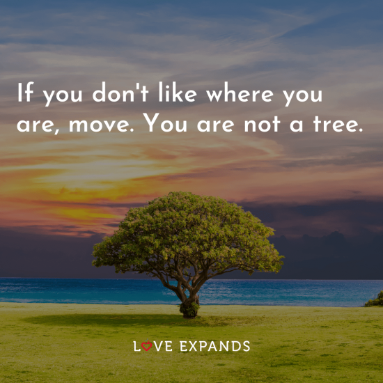 """Picture quote featuring a tree: """"If you don't like where you are, move. You are not a tree."""""""