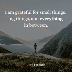 """Gratitude picture quote: """"I am grateful for small things, big things, and everything in between."""""""
