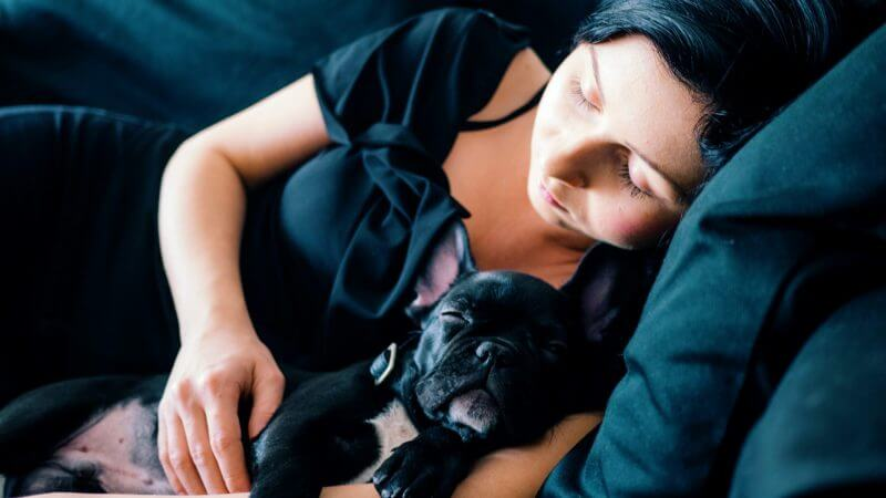 New Study Touts the Benefits of Sleeping With Your Dog in the Same Bed