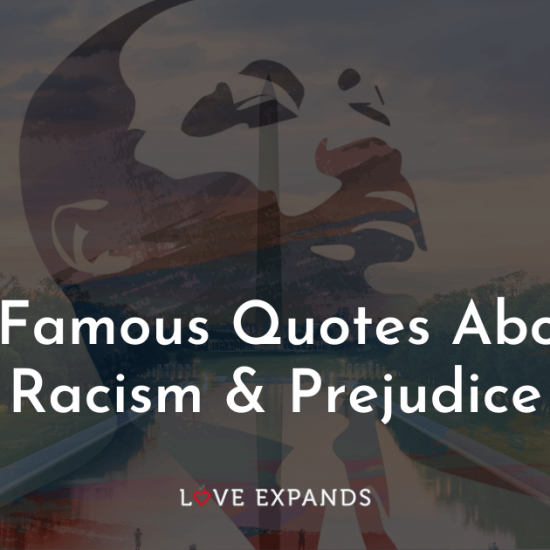 Quotes from Martin Luther King Jr and others about racism and prejudice