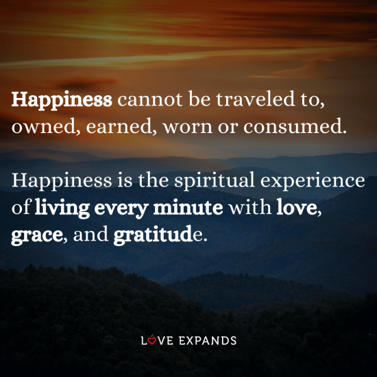 """Happiness cannot be traveled to, owned, earned, worn or consumed.Happiness is the spiritual experience of living every minute with love, grace, and gratitude."""