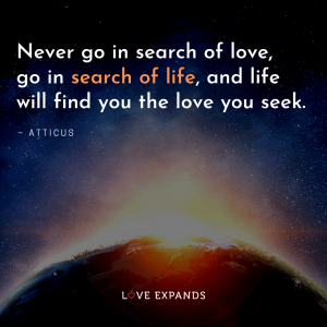 """Love and Life picture quote: """"Never go in search of love, go in search of life, and life will find you the love you seek."""""""