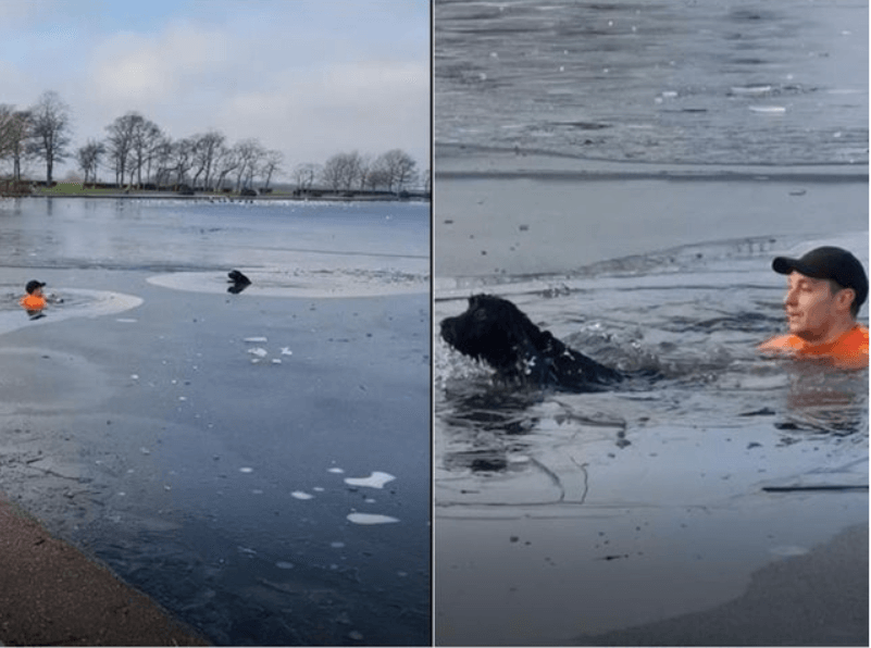 Dog Trapped in Frozen River Miraculously Rescued by Passing Jogger