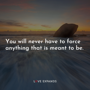 """Life picture quote about going with the flow: """"You will never have to force anything that is meant to be."""""""