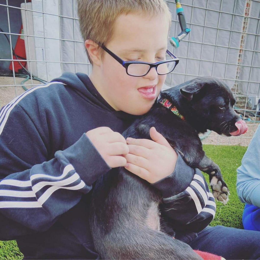 Rescue animals offer comfort to children with disabilities.