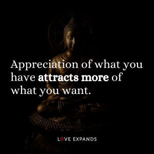 "Gratitude picture quote of buddha: ""Appreciation of what you have attracts more of what you want."""