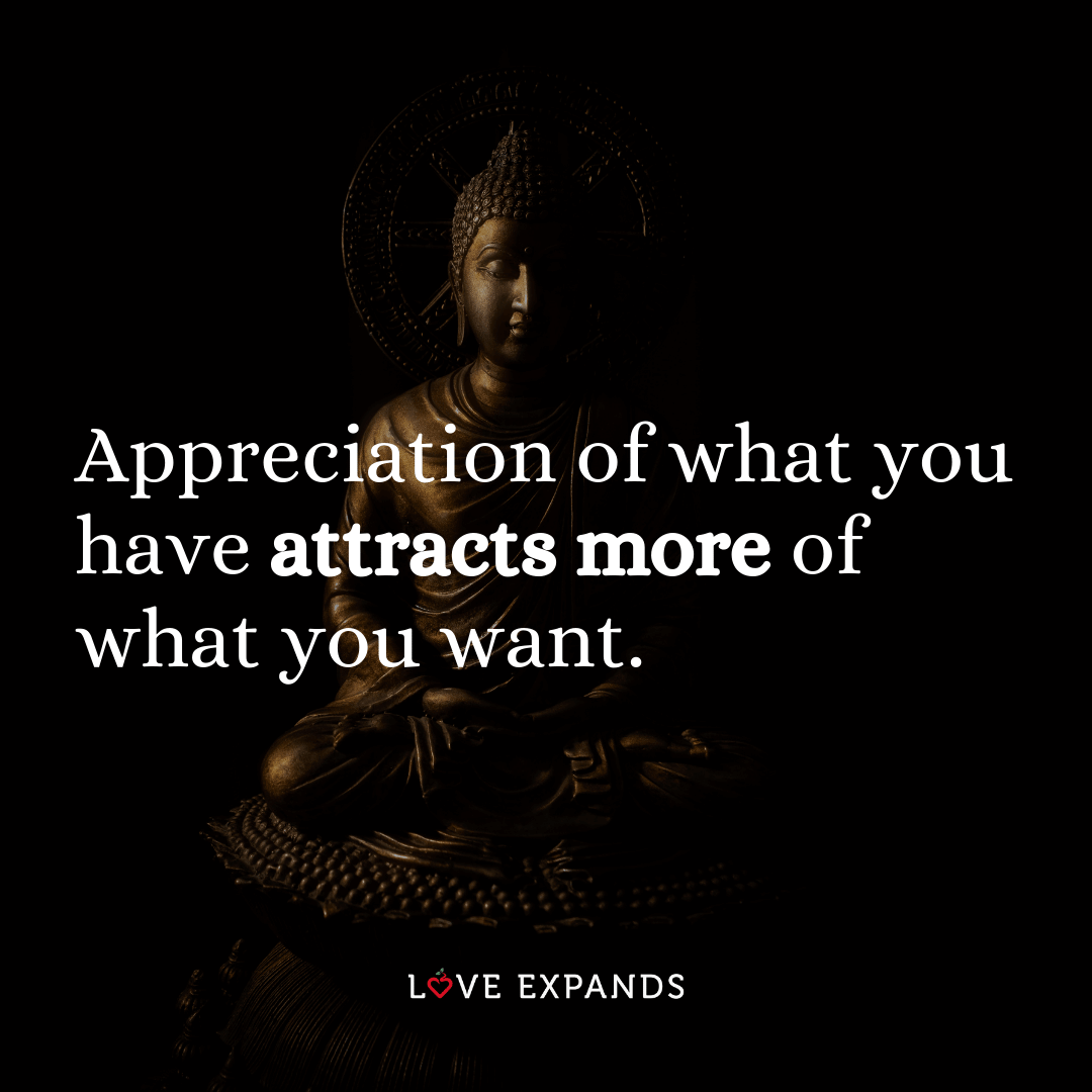 """Gratitude picture quote of buddha: """"Appreciation of what you have attracts more of what you want."""""""