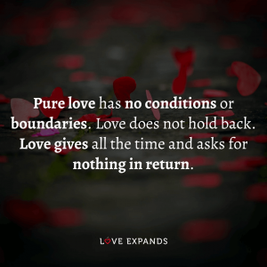 "Love picture quote: ""Pure love has no conditions or boundaries. Love does not hold back."""