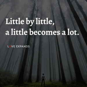 """Encouragement picture quote about effort and making progress: """"Little by little, a little becomes a lot."""""""