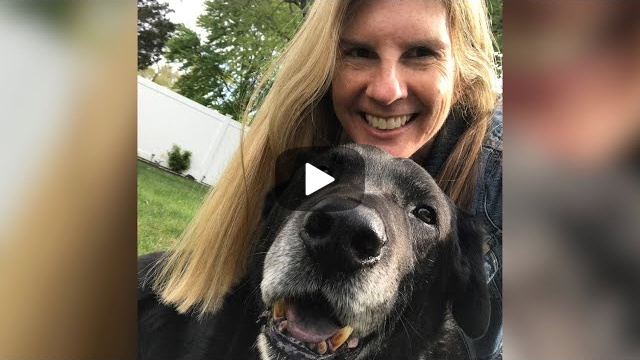 Woman Adopted Senior Dog That Was Chained For 15 Years